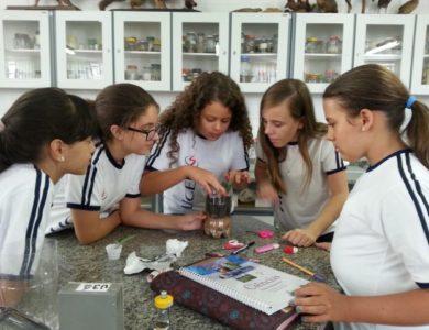 Alunos dos 7ºs anos fazem experimentos